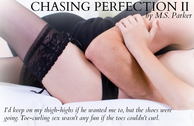 ChasingPerfectionIITeaser